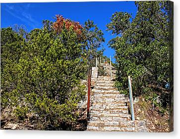 Stairs To Mount Baldy  Canvas Print by Judy Vincent