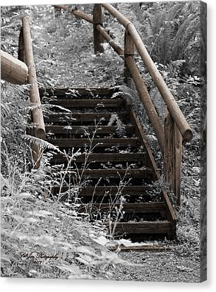 Canvas Print featuring the photograph Stairway Home by Jeanette C Landstrom