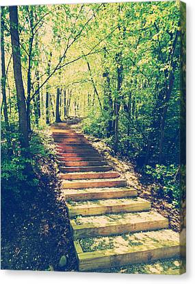 Stairway Into The Forest Canvas Print by Phil Perkins