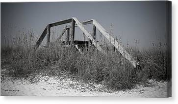 Stairway To Heaven Pano Canvas Print by Debra Forand