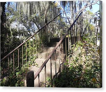 Stairway To Nowhere Canvas Print by Patricia Greer
