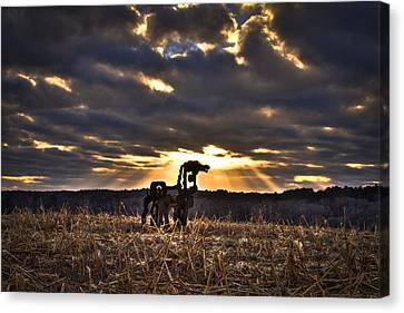 Stairways To Heaven The Iron Horse Canvas Print by Reid Callaway