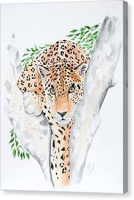 Stalker In The Trees Canvas Print by Joette Snyder