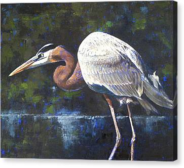 Canvas Print featuring the painting Stalking by Pam Talley