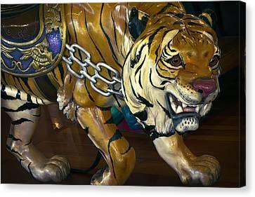 Stalking Tiger Of Looff Carousel  1909 Canvas Print by Daniel Hagerman