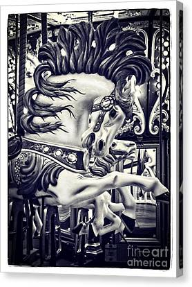 Stallion - Carousel Canvas Print