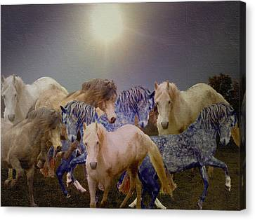 Canvas Print - Stallions On Stage As Vivaldi's Spring Plays by Patricia Keller