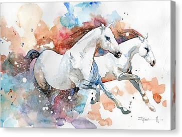Sean Horse Canvas Print - Stallions by Sean Parnell
