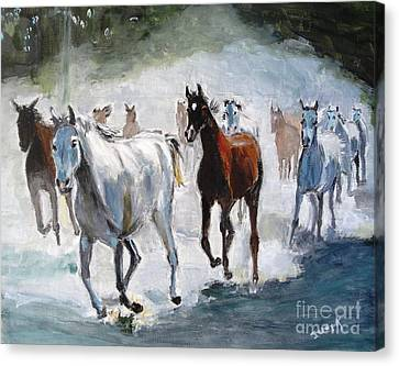 Stampede Canvas Print by Judy Kay