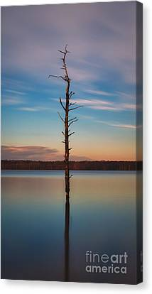 Stand Alone 16x9 Crop Canvas Print