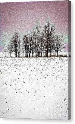Stand Alone Canvas Print by Gordon Wood