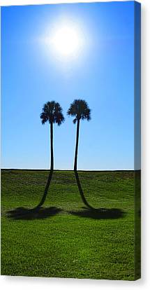 Stand By Me - Palm Tree Art By Sharon Cummings Canvas Print