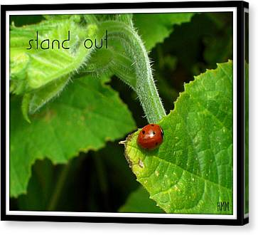 Canvas Print featuring the photograph Stand Out by Heidi Manly