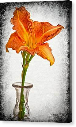 Stand Out Lily Canvas Print by Sandi OReilly