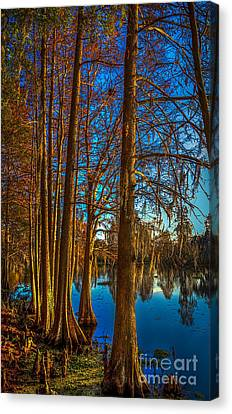 Stand Tall Canvas Print by Marvin Spates