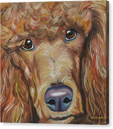 Standard Poodle Canvas Print by Melissa Smith