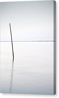 Standing Alone Canvas Print by Jorge Maia