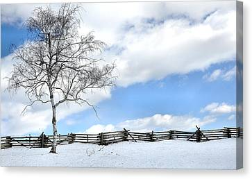 Standing Alone Canvas Print by Todd Hostetter