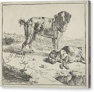 Standing And Sleeping Dog, Johan Le Ducq Canvas Print by Johan Le Ducq