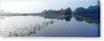 Standing Floodwater, Mississippi River Canvas Print by Panoramic Images