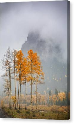 Standing In The Rain Canvas Print