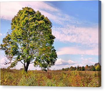 Canvas Print featuring the photograph Standing Tall by Janice Drew