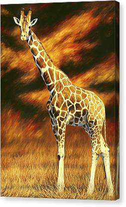 Standing Tall Canvas Print by Lucie Bilodeau