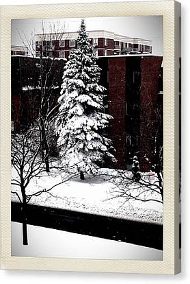 Canvas Print featuring the photograph Standing Tall by Zinvolle Art
