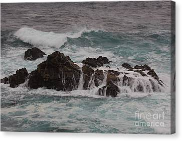 Standing Up To The Waves Canvas Print by Suzanne Luft
