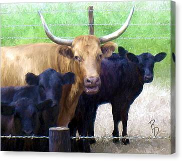 Standout Steer Canvas Print by Ric Darrell