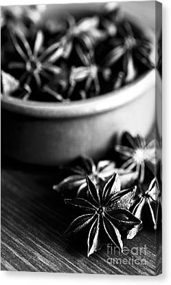 Star Anise Dish Canvas Print by Anne Gilbert