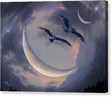 Canvas Print featuring the photograph Star Flight by Glenn Feron