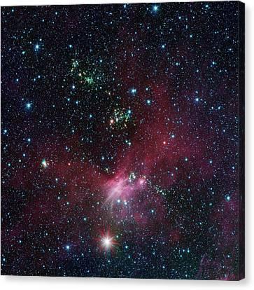 Star-forming Region Canvas Print by Nasa/jpl-caltech/university Of Wisconsin