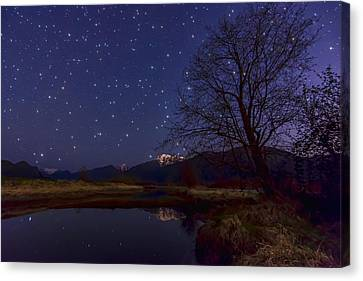Star Light Star Bright Canvas Print by James Wheeler