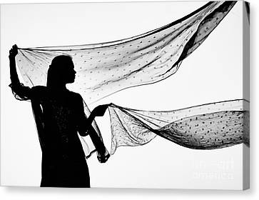 Star Shawls In The Wind Canvas Print by Tim Gainey