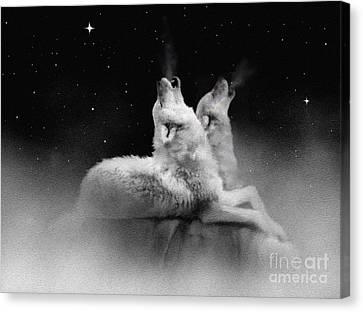 Star Talkers Canvas Print by Robert Foster