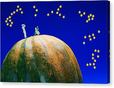 Canvas Print featuring the photograph Star Watching On Pumpkin Food Physics by Paul Ge