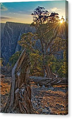 Starburst At Painted Wall Canvas Print by Eric Rundle