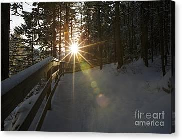 Starburst Sun Shine - Franconia Notch State Park New Hampshire  Canvas Print by Erin Paul Donovan