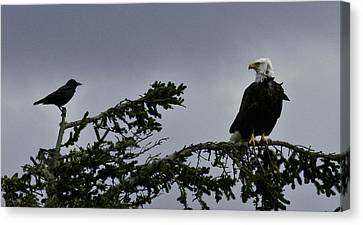 Canvas Print featuring the photograph Stare Down by Betty Depee