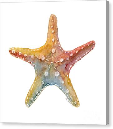 Seashell Canvas Print - Starfish by Amy Kirkpatrick