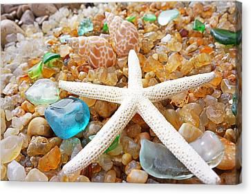Starfish Art Prints Shells Agates Coastal Beach Canvas Print by Baslee Troutman