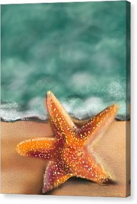 Starfish  Canvas Print by Christine Fournier