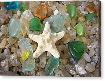 Starfish Fine Art Photography Seaglass Coastal Beach Canvas Print by Baslee Troutman