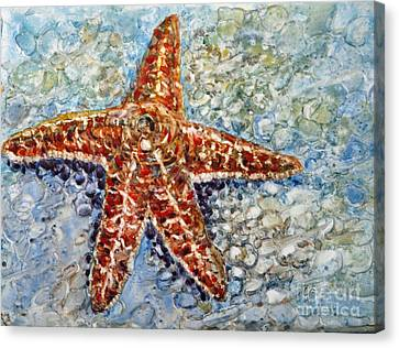 Starfish Canvas Print by Louise Peardon