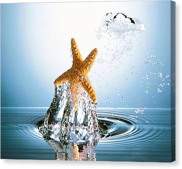 Starfish Rising On Water Bubble Canvas Print by Panoramic Images