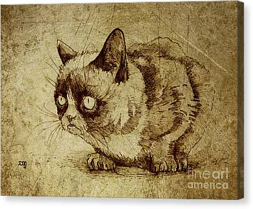 Staring Cat Canvas Print