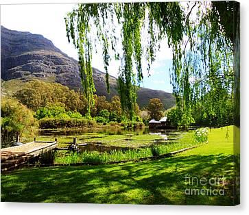 Stark Conde Wine Estate Stellenbosch South Africa Canvas Print