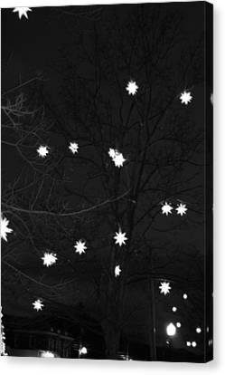 Starlight Canvas Print by Barbara Bardzik