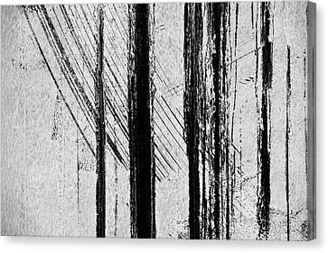 Starlight Behind The Trees Canvas Print by KM Corcoran